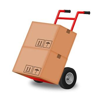 Taşıma-kutusu
